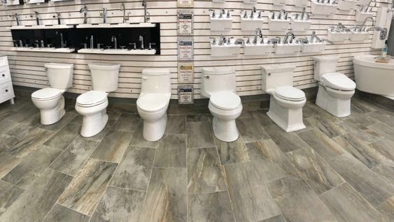 Toilet Service in Oakville, Burlington, Milton